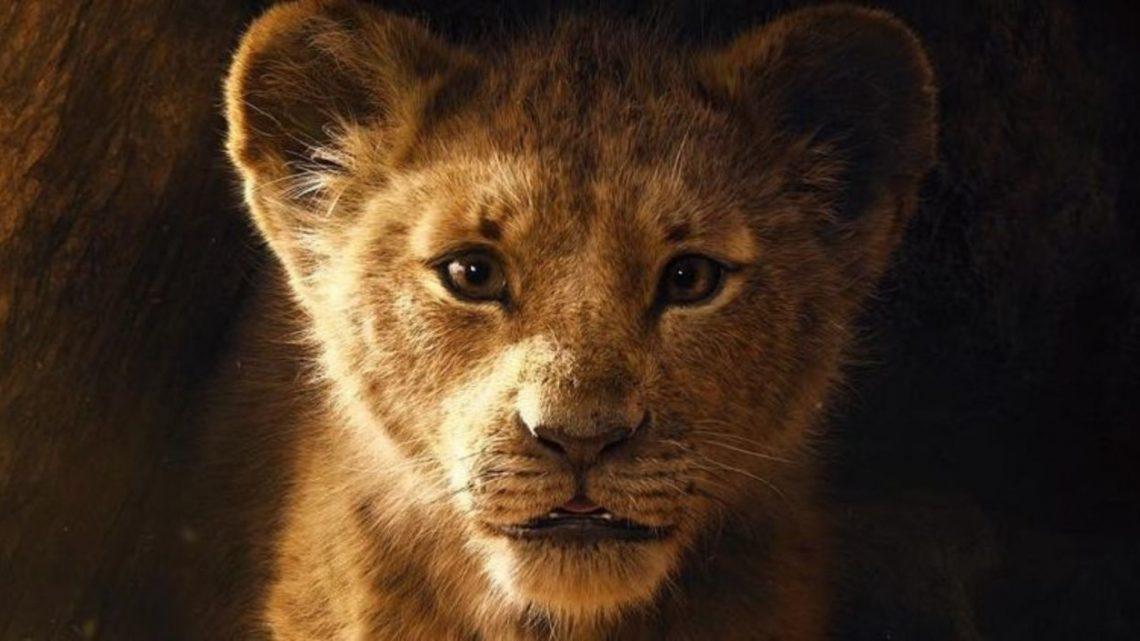 Leví kráľ trailer: Podľa všetkého pôjde hraná rozprávka verne po stopách animovanej klasiky