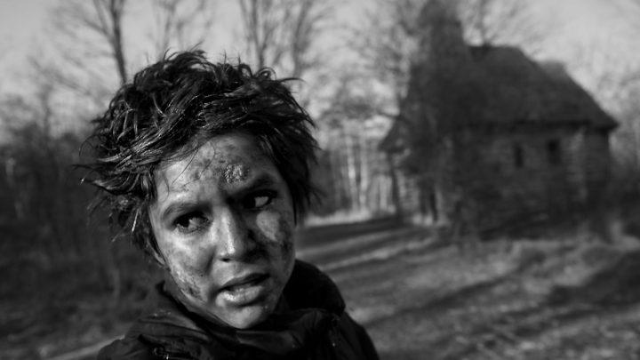 Prvý trailer na Nabarvené ptáče Václava Marhoula s hviezdami ako Stellan Skarsgård alebo Harvey Keitel