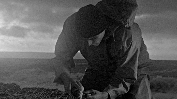 Bait recenzia: Odvážne artové dielo pripomína staré klasiky európskeho filmu